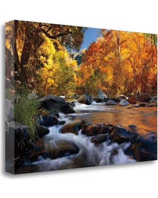 "Tangletown Fine Art 'River of Gold' Photographic Print on Wrapped Canvas CAJMP326-2416c Size: 16"" H x 24"" W"