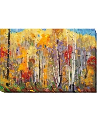 """Artistic Home Gallery 'Disco' Oil Painting Print on Wrapped Canvas 729CG Size: 30"""" H x 45"""" W x 1.5"""" D"""