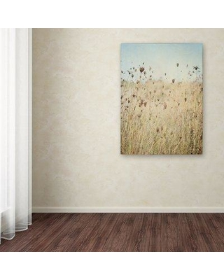 "Trademark Art 'Falling Queen Anne's Lace II' Photographic Print on Canvas WAP00831-C Size: 24"" H x 18"" W x 2"" D"