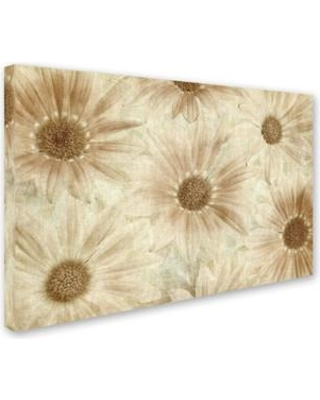 "Ophelia & Co. 'Vintage Daisies' Photographic Print on Wrapped Canvas OPHL9529 Size: 12"" H x 19"" W x 2"" D"