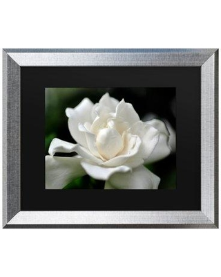 """Charlton Home 'Lovely Gardenia' Framed Graphic Art Print on Canvas W001163760 Size: 16"""" H x 20"""" W x 0.5"""" D Format: Silver"""