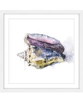 36 Off Marmont Hill Tidal Conch By Rachel Byler Framed Painting Print On Paper Mh Racbyl 40 Wfp Size 12 H X 12 W X 1 5 D