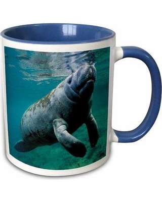 Highland Dunes New Haven West Indian Manatee Trichechus Manatus In Florida Usa Coffee Mug W000952131