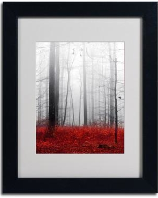 "Trademark Fine Art 'Little Red Carpet' by Philippe Sainte-Laudy Framed Photographic Print PSL0273-B1114MF / PSL0273-B1620MF Size: 14"" H x 11"" W Frame Color: Brown"