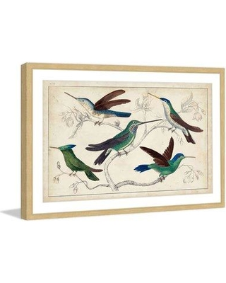 """Marmont Hill """"Hummingbirds"""" Framed Painting Print MH-WAG-345-NFP Size: 20"""" H x 30"""" W x 1.5"""" D"""