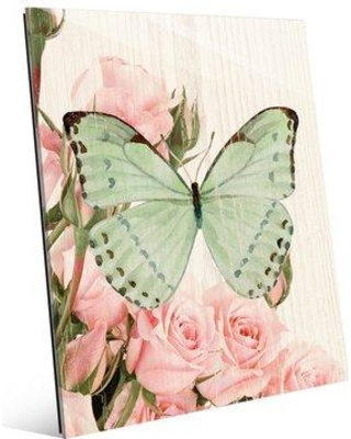 """Click Wall Art Butterfly and Roses Garden Party Graphic Art SBC0000011ACR11 Size: 20"""" H x 16"""" W x 1"""" D"""