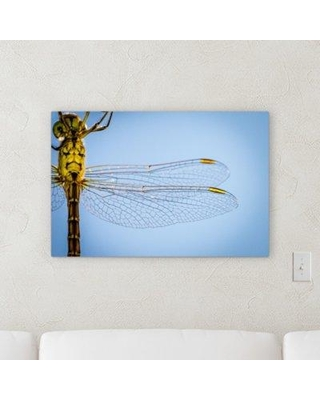 """Winston Porter 'The Little Animals (57)' Photographic Print on Canvas BF120537 Size: 10"""" H x 15"""" W x 2"""" D"""