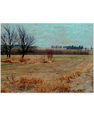 "Winston Porter 'Fields I' Graphic Art Print on Wrapped Canvas WNPO4371 Size: 24"" H x 32"" W x 2"" D"