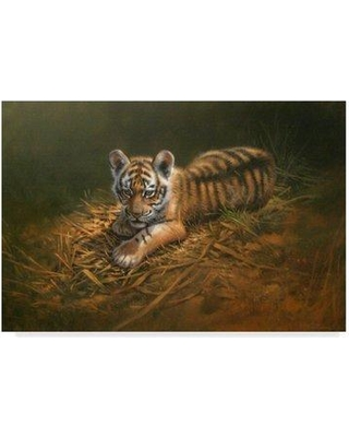 """World Menagerie 'Tiger Cub' Acrylic Painting Print on Wrapped Canvas WRME2690 Size: 30"""" H x 47"""" W x 2"""" D"""