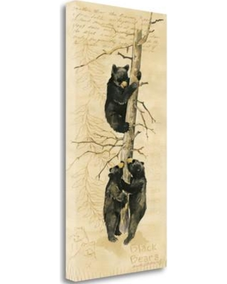 Tangletown Fine Art 'Black Bears' by Anita Phillips Graphic Art on Wrapped Canvas SBAP1317-1632c