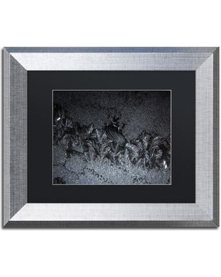 """Trademark Art 'Frost on my Window at Night' Framed Photographic Print on Canvas KS01227-S1 Size: 11"""" H x 14"""" W x 0.5"""" D Matte Color: Black"""