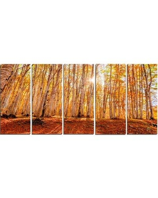 Design Art 'Colorful Red Forest at Sunset' 5 Piece Photographic Print on Wrapped Canvas Set PT13959-401