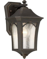 Darby Home Co Coyan 1-Light Outdoor Wall Lantern DBHM3536