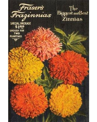 Gracie Oaks Hilson 'Biggest and Best Zinnias' Graphic Art Print on Canvas GRKS2996