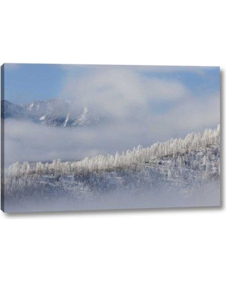 """Millwood Pines 'Colorado Hoarfrost Coats the Trees of Pike Nf' Photographic Print on Wrapped Canvas BI152320 Size: 10"""" H x 16"""" W x 1.5"""" D"""