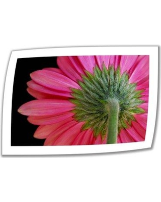 """ArtWall 'Shy Flower' by Dan Holm Photographic Print on Rolled Canvas DH-28 Size: 28"""" H x 40"""" W"""
