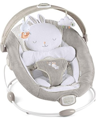 Fall Sales Are Upon Us Get This Deal On Ingenuity Inlighten Bouncer