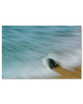 """Trademark Art Whelk Seashell and Misty Wave Photographic Print on Wrapped Canvas MFG0062-C Size: 30"""" H x 47"""" W x 2"""" D"""