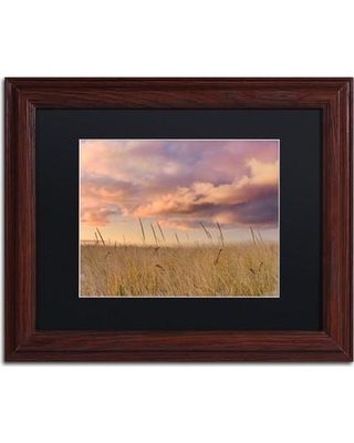 "Trademark Art 'Beachgrass Sunrise' by Michael Blanchette Framed Photographic Print ALI3915-W1 Size: 11"" H x 14"" W x 0.5"" D Matte Color: Black"