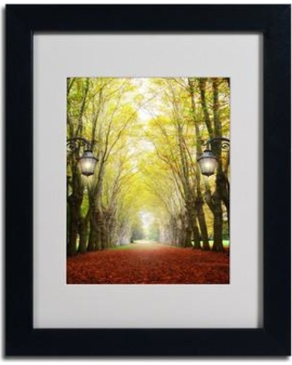 """Trademark Fine Art 'Plane Tree Alley' by Philippe Sainte-Laudy Framed Photographic Print PSL0239-B1114MF / PSL0239-B1620MF Size: 14"""" H x 11"""" W Frame Color: Black"""