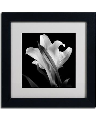 """House of Hampton 'Lily' Framed Photographic Print HMPT5050 Size: 11"""" H x 11"""" W x 0.5"""" D"""