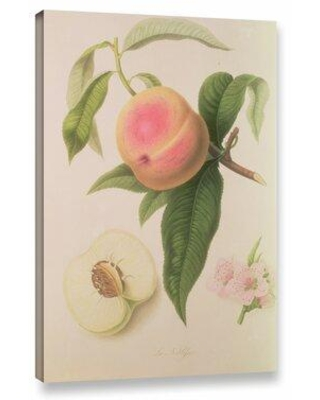 "Ophelia & Co. Noblesse Peach Painting Print on Wrapped Canvas OPCO3114 Size: 12"" H x 8"" W x 2"" D"