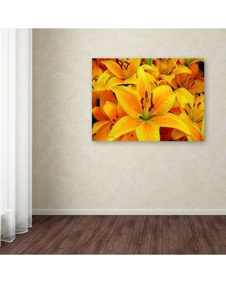 "Trademark Art 'Yellow Flower 2' Photographic Print on Wrapped Canvas ALI12115-C Size: 14"" H x 19"" W x 2"" D"