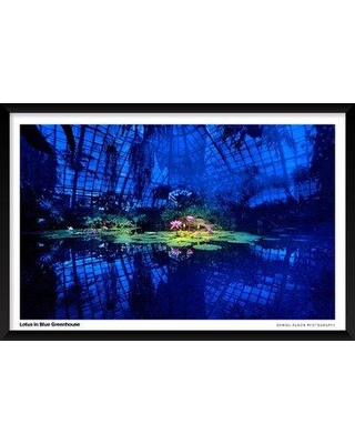 """Artography Limited 'Lotus in Blue Greenhouse' Framed Photographic Print Poster BI033092 Size: 25"""" H x 37"""" W x 1.25"""" D"""
