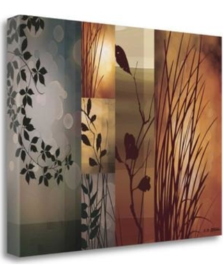"""Tangletown Fine Art 'Autumnal Equinox' Graphic Art Print on Wrapped Canvas CAAEP102-2418c Size: 18"""" H x 24"""" W"""
