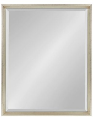 Kate and Laurel Calter 24-Inch x 29-Inch Beveled Frame Decorative Wall Mirror in Silver