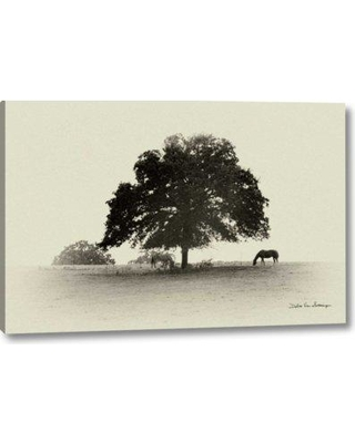 "Winston Porter 'Horses and Trees I' Photographic Print on Wrapped Canvas BI155150 Size: 11"" H x 16"" W x 1.5"" D"