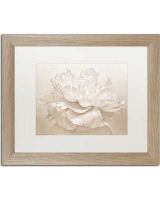 "Ebern Designs 'White Peony' Framed Photographic Print on Canvas ENDE1394 Size: 16"" H x 20"" W x 0.5"" D Frame Color: Silver"