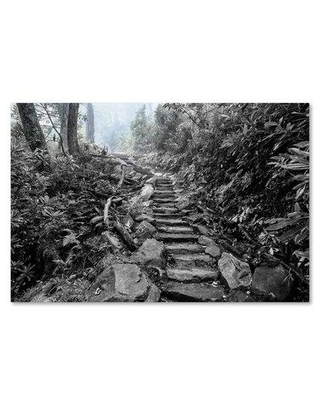 """Trademark Fine Art 'Chimney Tops Steps BW' Graphic Art Print on Wrapped Canvas ALI16332-C Size: 22"""" H x 32"""" W"""