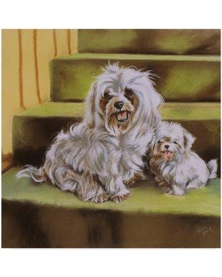 """Trademark Fine Art 'Maltese Steps' Oil Painting Print on Wrapped Canvas ALI25057-CGG Size: 18"""" H x 18"""" W"""