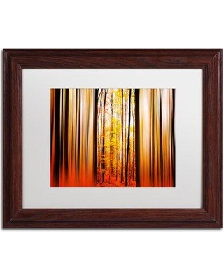 """Trademark Fine Art 'Excited Oxygen' by Philippe Sainte-Laudy Framed Photographic Print PSL0305-W1 Size: 11"""" H x 14"""" W Matte Color: White"""