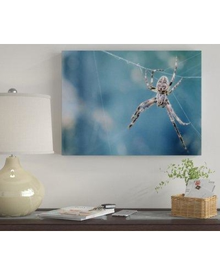 """Winston Porter 'The Little Animals (43)' Photographic Print on Canvas BF120530 Size: 30"""" H x 40"""" W x 2"""" D"""