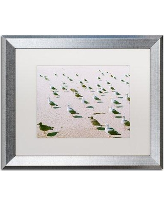 """Trademark Art 'Seagulls at the Beach' Framed Photographic Print on Canvas AM0321-B1114MF / AM0321-B1620MF Size: 16"""" H x 20"""" W x 0.5"""" D Frame Color: Brown"""