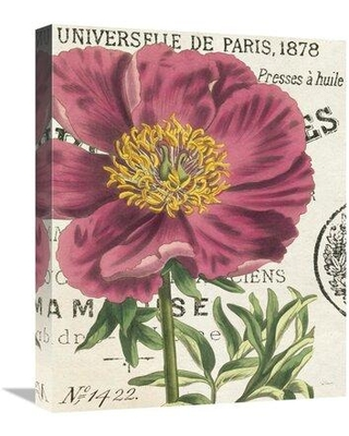 """East Urban Home 'Peony Botany' Graphic Art Print on Canvas UBAH6342 Size: 20"""" H x 16"""" H x 1.5"""" D"""