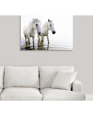 """Charlton Home 'White Beauty' Photographic Print on Canvas W000107669 Size: 24"""" H x 36"""" W x 1.5"""" D"""