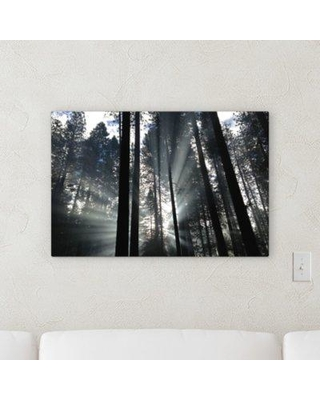 """East Urban Home 'Camping In The Wilderness 29' Photographic Print on Wrapped Canvas BF059507 Size: 10"""" H x 20"""" W x 2"""" D"""