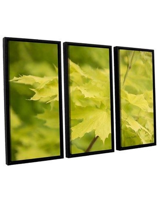 "Red Barrel Studio 'Spring Leaves I' 3 Piece Framed Photographic Print on Canvas Set RBRS5065 Size: 24"" H x 36"" W x 2"" D"