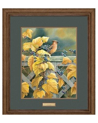 New Deals On Wild Wings Country Garden Waxwing By Susan Bourdet Framed Painting Print Paper In Brown Yellow Size Medium 25 32 Wayfair F085100039