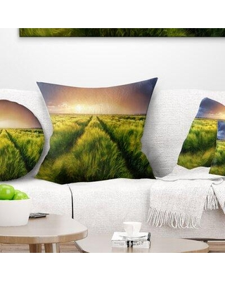Here S A Great Deal On East Urban Home Landscape Printed Storm Light On Meadow Pillow Product Type Throw Pillow Polyester Polyfill Polyester Polyester Blend In Blue