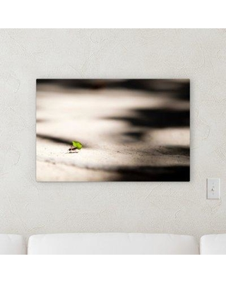 """Winston Porter 'The Little Animals (109)' Photographic Print on Canvas BF120562 Size: 30"""" H x 30"""" W x 2"""" D"""