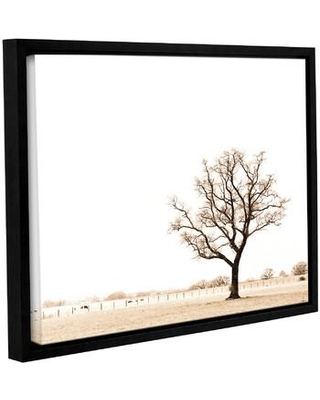 """Wrought Studio Bleached Bones of Winter Framed Photographic Print VKGL6962 Size: 18"""" H x 24"""" W x 2"""" D"""