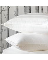 Eastern Accents Rhapsody Luxe 100% Down Pillow DM-BPC-ST02 Size: King