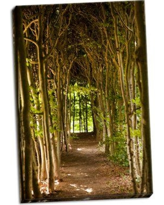 Union Rustic 'Path Through the Trees' Photographic Print on Wrapped Canvas BI051501