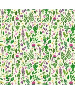 """Bungalow Rose Malloy Removable Botanical Floral 6.25' L x 75"""" W Peel and Stick Wallpaper Roll BF182588"""