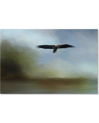 """Trademark Art 'Juvenile Eagle at the Lake' Graphic Art Print on Wrapped Canvas ALI14470-C Size: 12"""" H x 19"""" W"""