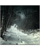 "PHLA ""Into the Winter Forest"" by Kiyo Murakami Print on Wrapped Canvas 32PH - P26 Size: 16"" H x 16"" W x 1.5"" D"
